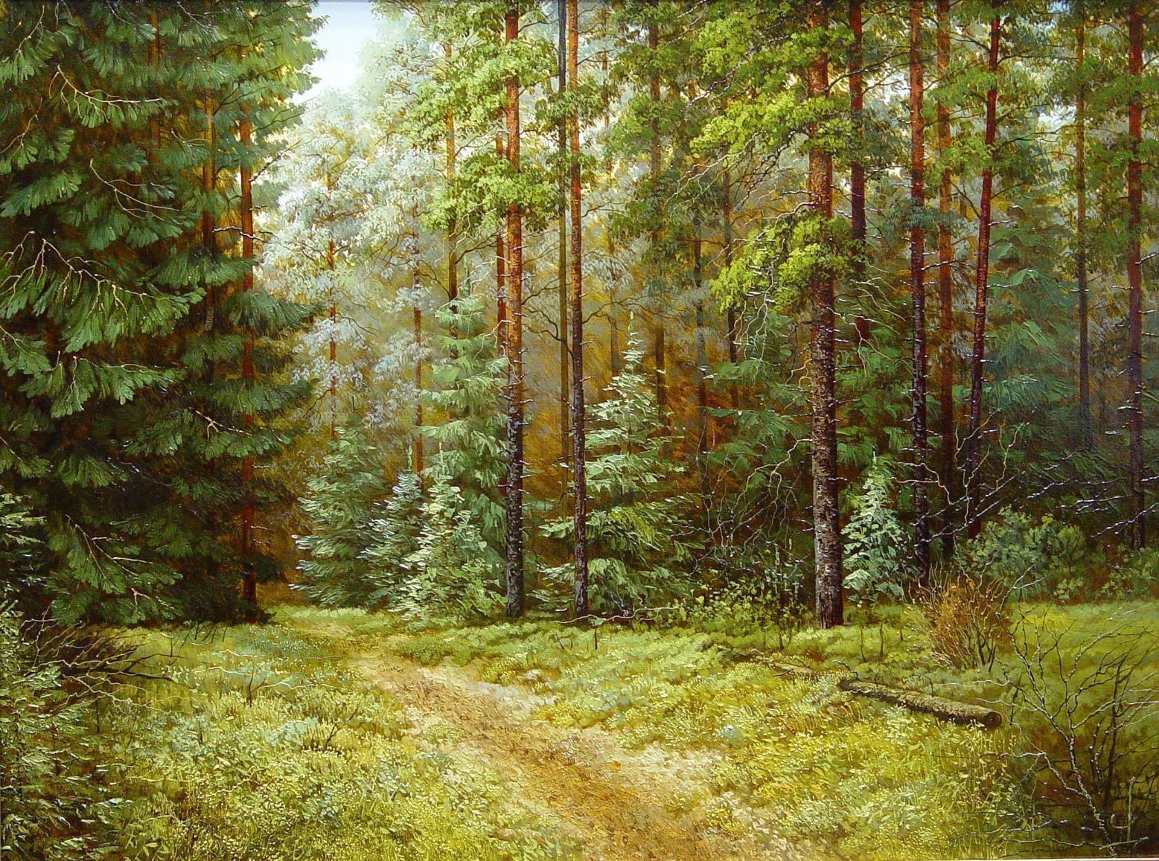 Картинки леса в детском саду