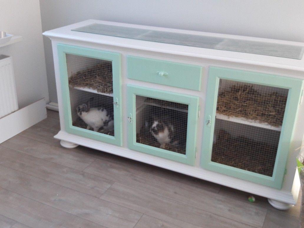 Rabbit Cage In Dressoir Konijnenhok In Dressoirkast