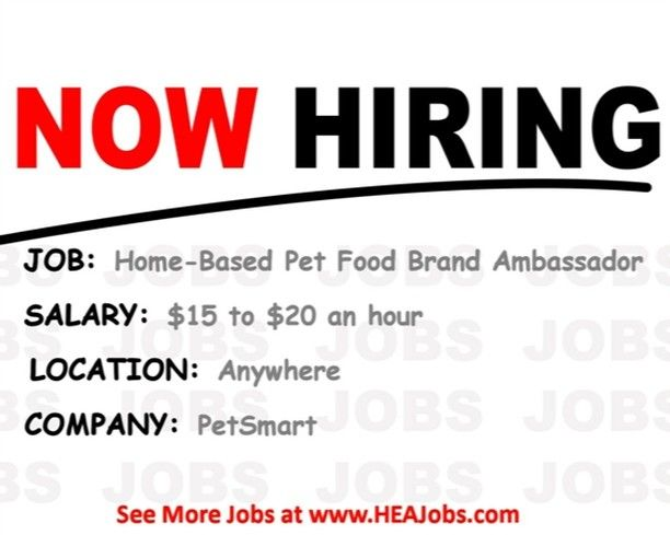 View More Work From Home Jobs At Heajobs Com Today New Jobs Posted Daily Jobs Jobposting Job W Work From Home Jobs Nursing Jobs Work From Home Companies
