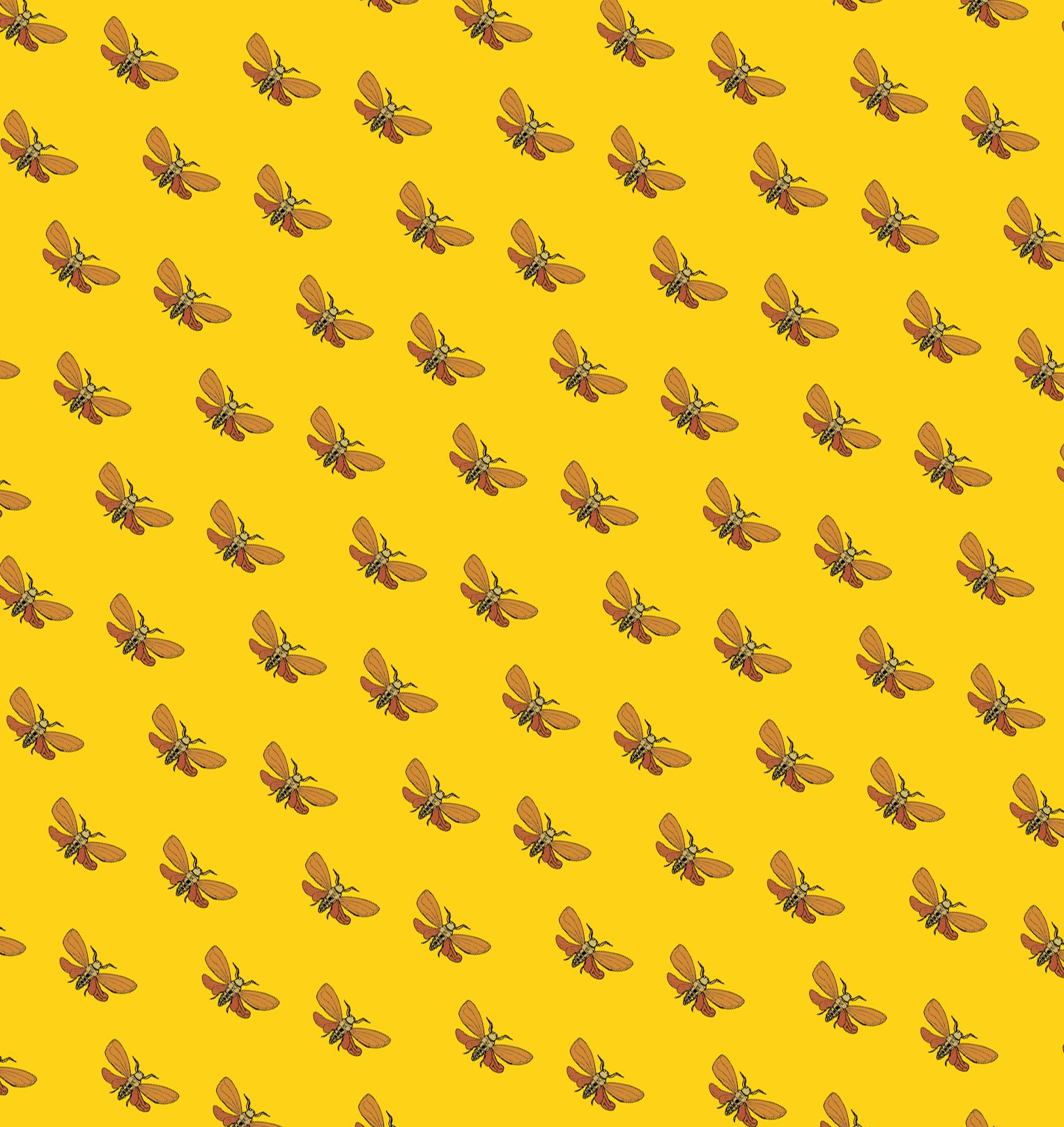 Secterns (Moth on Yellow) - feel free to ask for the high res. I'd suggest use them as gift wrappers :)