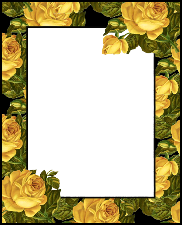 Transparent PNG Photo Frame with Yellow Roses Flower