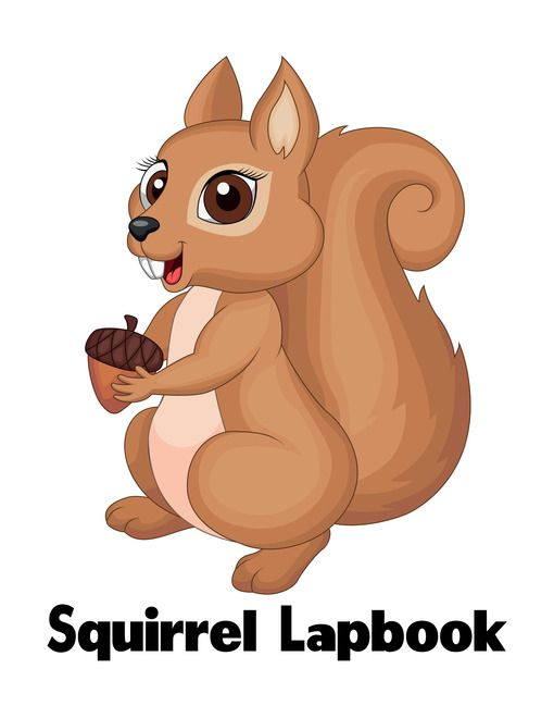 Free Squirrel Unit Lesson Plan And Lapbook Printables Squirrel Squirrel Clipart Animal Clipart