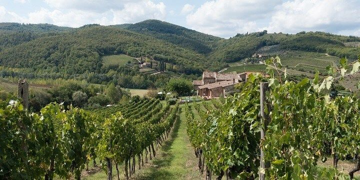 Chianti, Tuscany, Central Italy