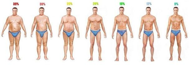 Body Fat Percentages Of Men And Women - Pictures & Descriptions