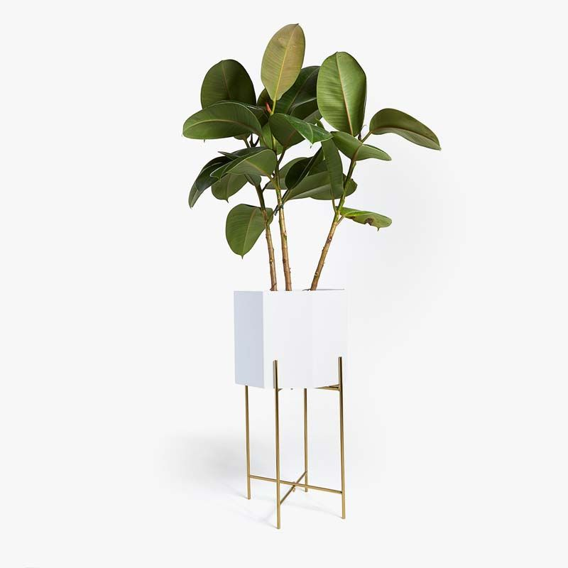 Plant Stand / Pflanzenständer Aus #Metall In #weiß Und
