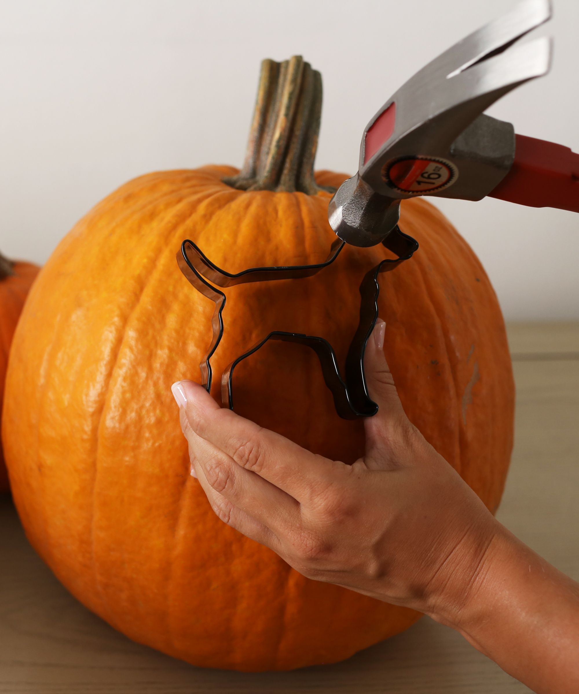 Best simple pumpkin carving ideas on pinterest