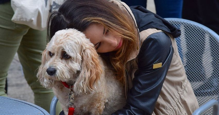 New Research Finds Animals May Help >> Researchers Find That Losing A Dog Can Be As Hard As Losing A Loved