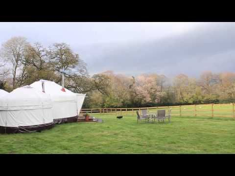 The Treehouse And The Yurt At Harptree Court Glamping With