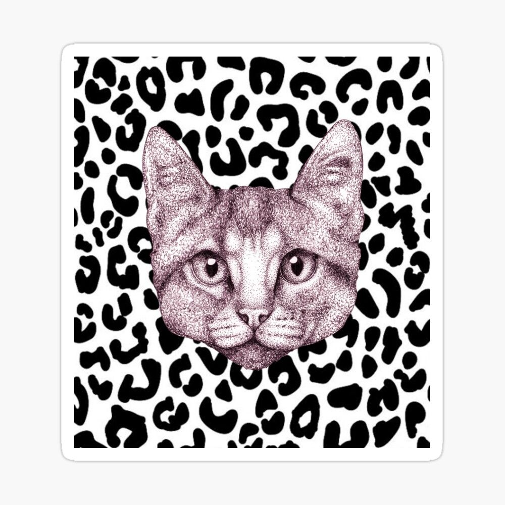 'Cat with Cheetah Print Background ' Sticker by Lukasz  Czyzewski