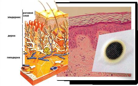 Китайские трансдермальные пластыри от гипертонии «HYPERTENSION PATCH»!