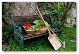 Best Time Plant Vegetable Garden, When To Plant A Vegetable Garden