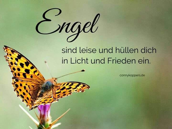 Engel sind leise | Schöne Sprüche | Guardian angels ...