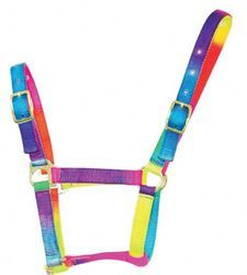 rainbow horse halter...I want this. Well first I need a horse