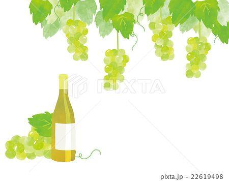 白ワインとぶどう イラスト イラスト Herbs
