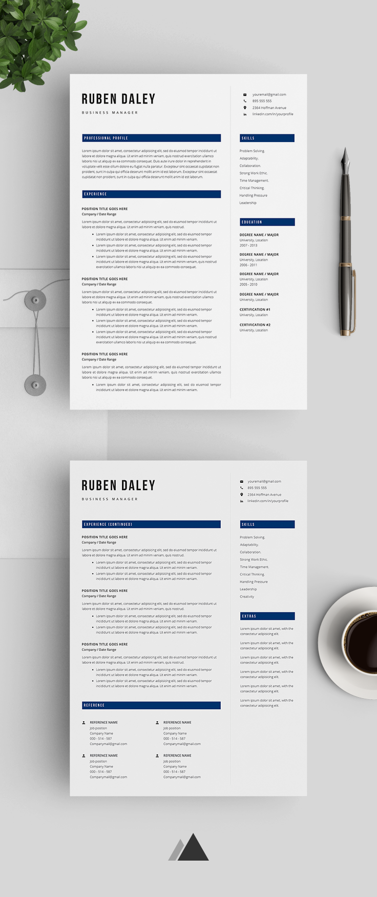 Professional Resume Template Modern Resume Template