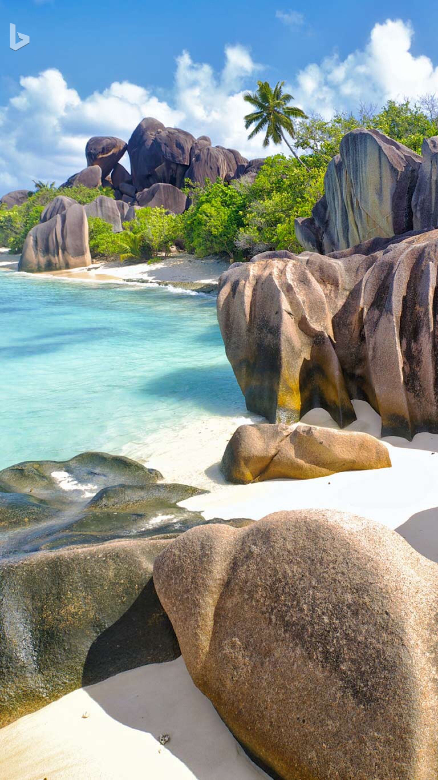 La Digue, Seychelles Islands (Oleksandr Dibrova, Copyright
