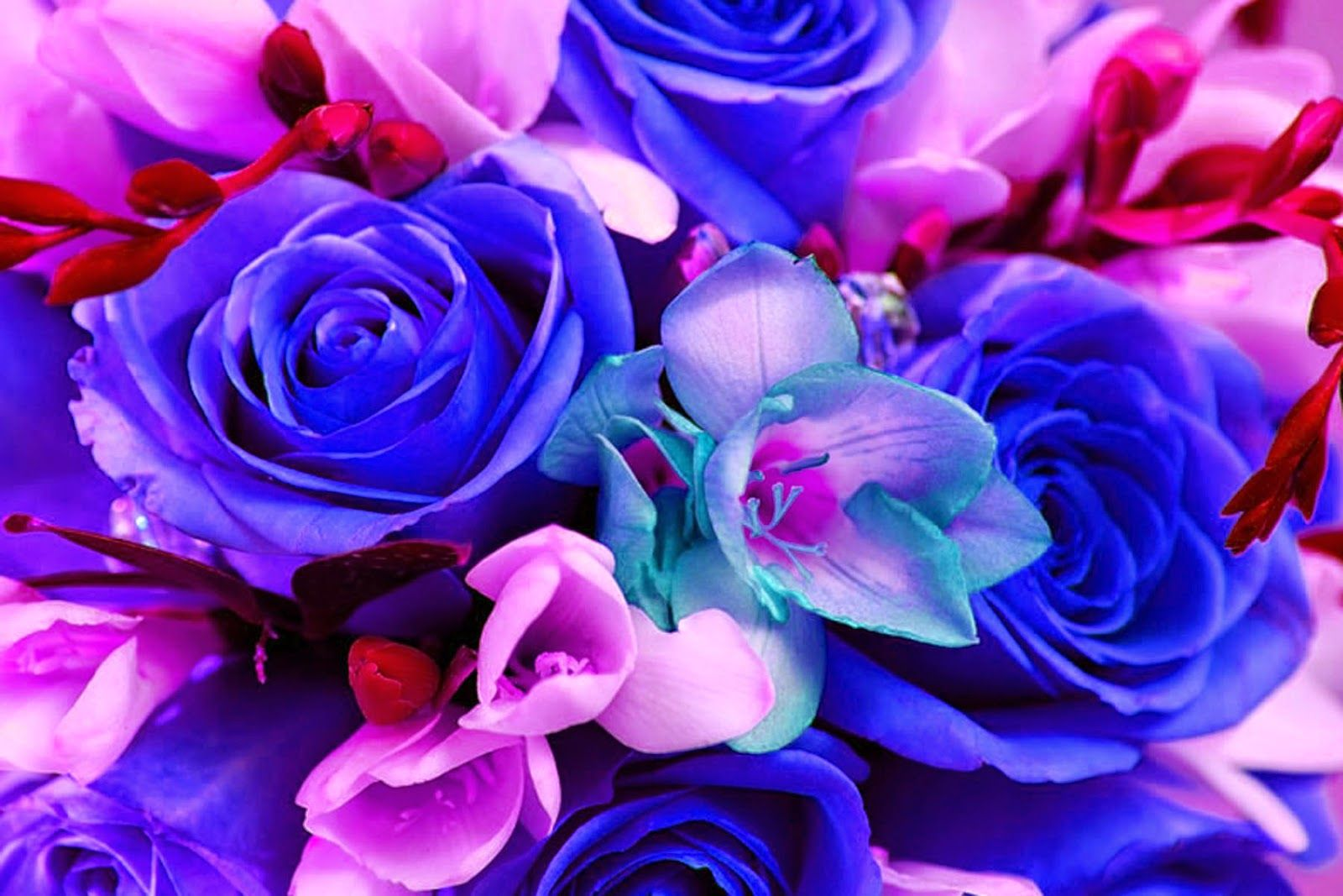 Colorful Bouquet of Flowers Wallpaper Background! Blue