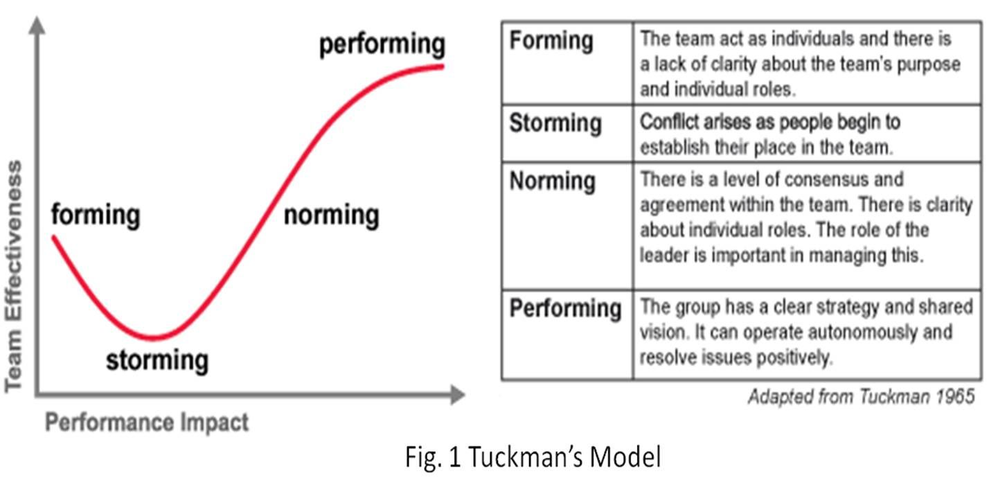 """tuckman's stages of group development """"forming, storming, norming, and performing"""" in 1965 he used it to  you can use tuckman's model to help your team reach the performing stage as quickly as possible  first you identify the stage of development that your team is at then, you use the specific strategies shown."""