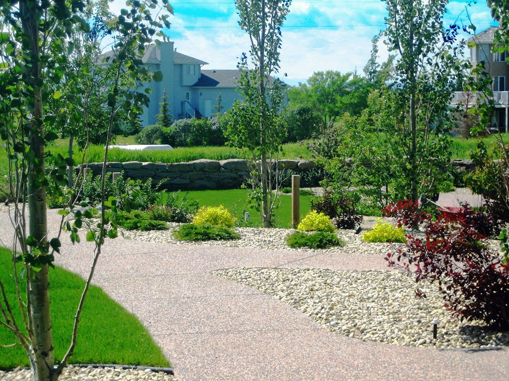 Yard Landscaping | Acreage Backyard | YARDS | Pinterest | Yard ...