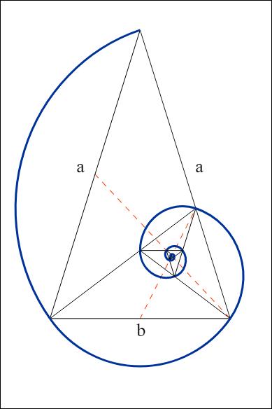 Dibujar La Proporción áurea Proporcion Aurea Espiral Aurea Aurea