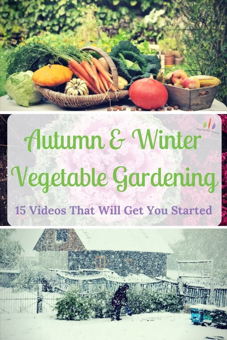 videos 2 get you started autumn u0026 winter vegetable gardening