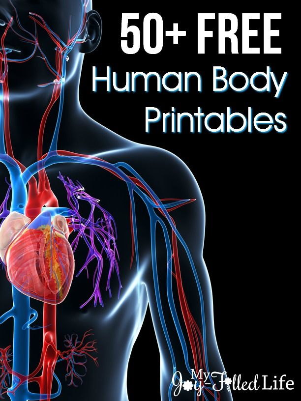 50 Free Human Body Printables Human Body Bodies And Homeschool