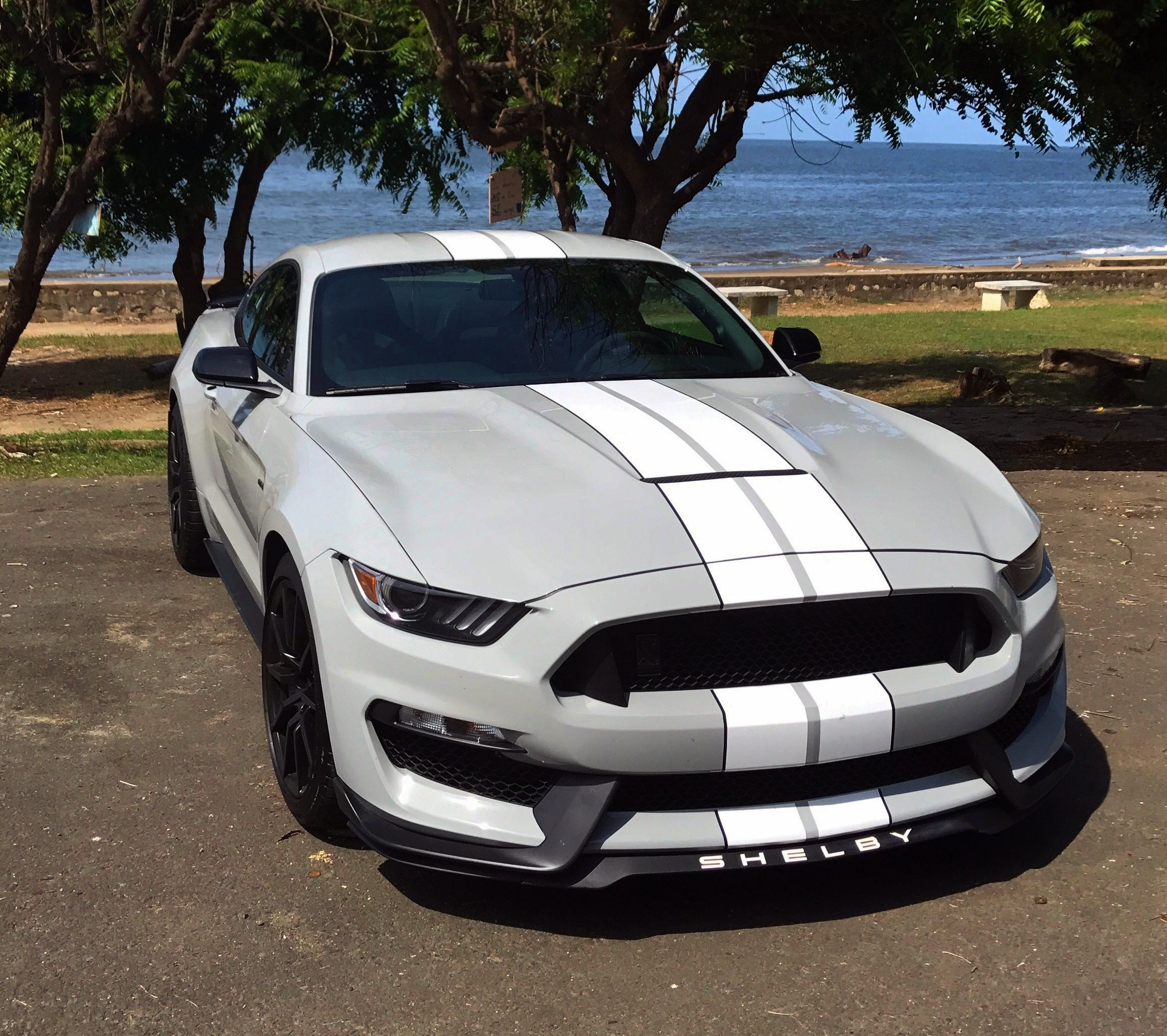 Shelby gt350 avalanche gray 2017 dream cars shelby gt c10 chevy