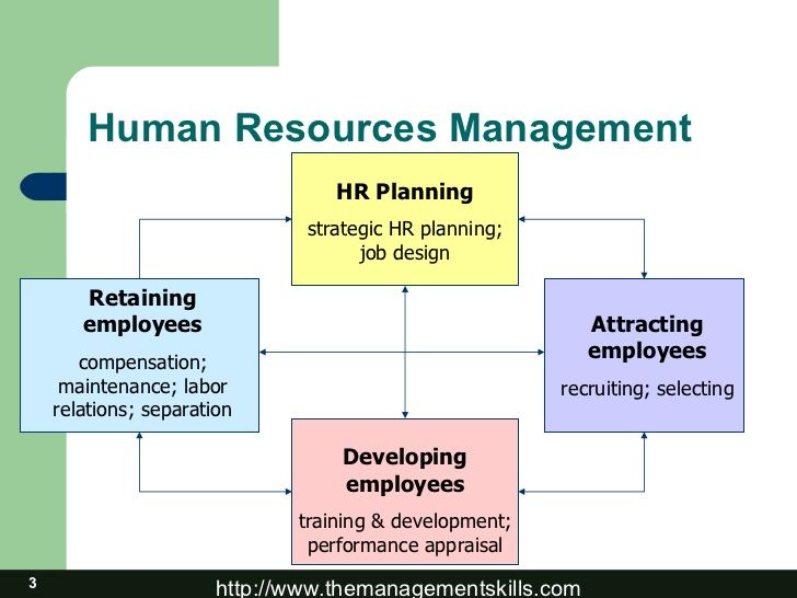 Human Resources Management Processes  This Shows The Human
