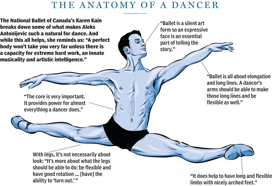 "Ballet is about elongation and long lines."" Port de Band™ helps ..."