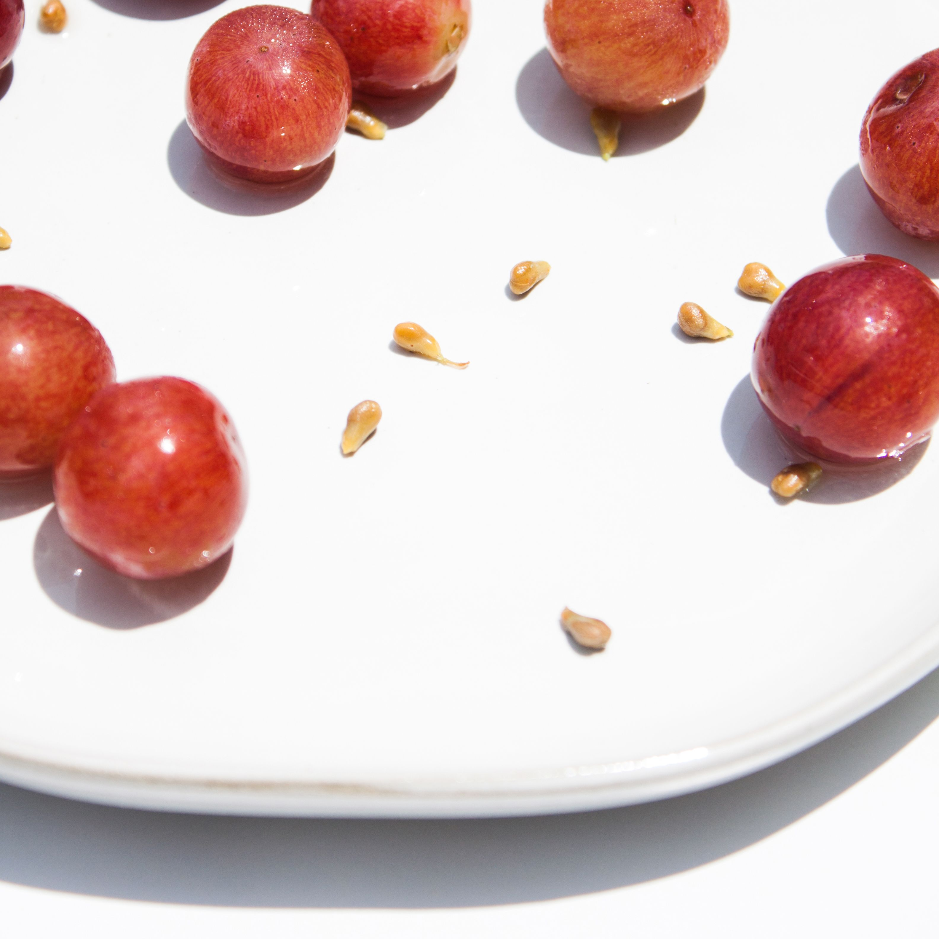 Vitis Vinifera Seed Extract Grape Seed Extract Skincare Ingredients Seed Extract