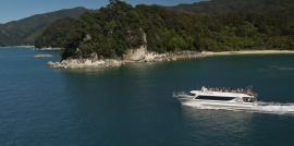 Take the Wilson's boat  http://www.abeltasman.co.nz/