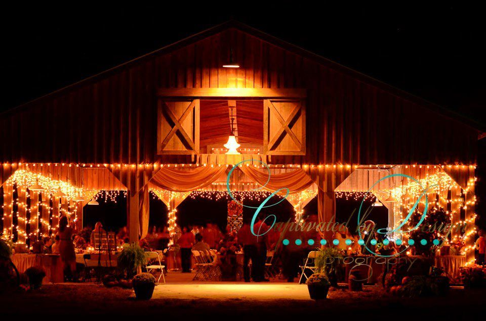 Diamond D Ranch Inc In Jacksonville Florida Offers A Rustic Ranch