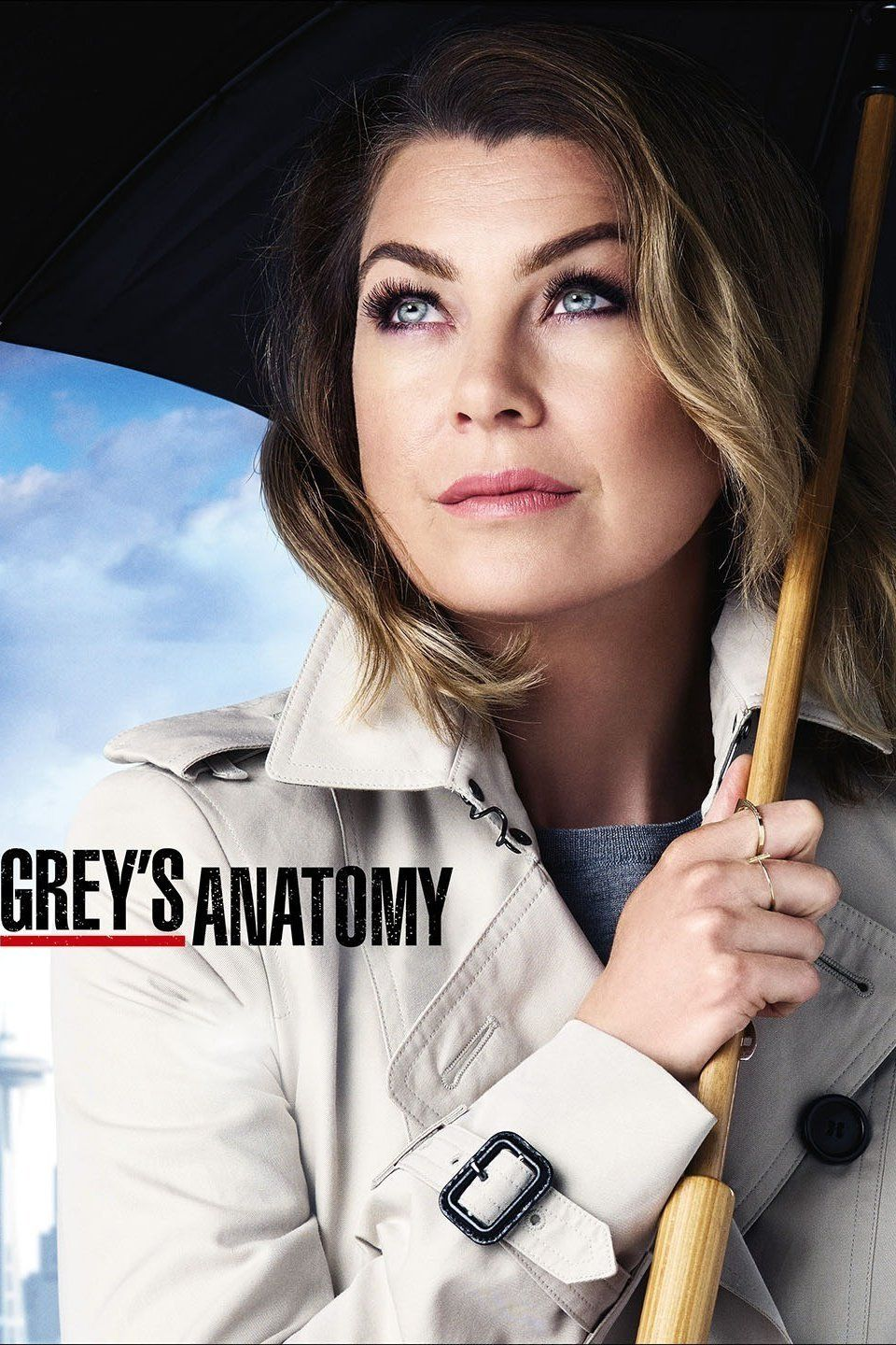 12 Questions For \'Grey\'s Anatomy\' Season 13 | Anatomy, Grays anatomy ...