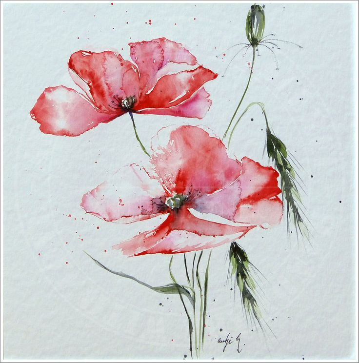Antje Hettner Picture Original Art Aquarell 30x30 Poppy Flower