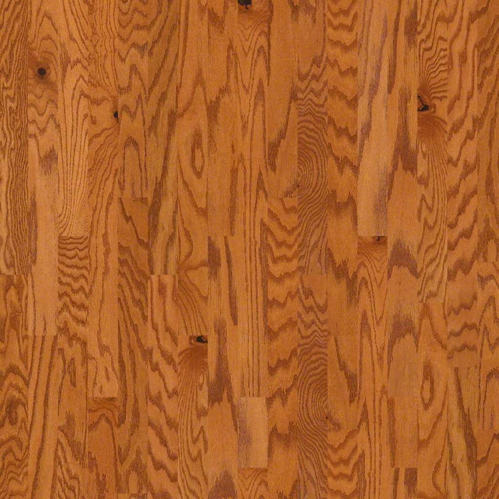 Archway oak (With images) Hardwood floors, Shaw flooring