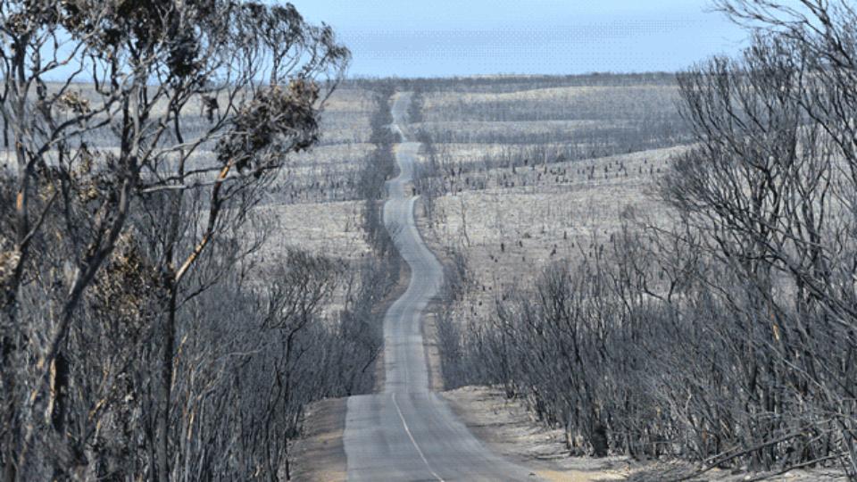 Australia bushfires Beforeandafter photos show extent