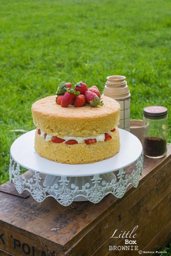 Little Box Brownie Layer cakes Pinterest Sponge cake Box