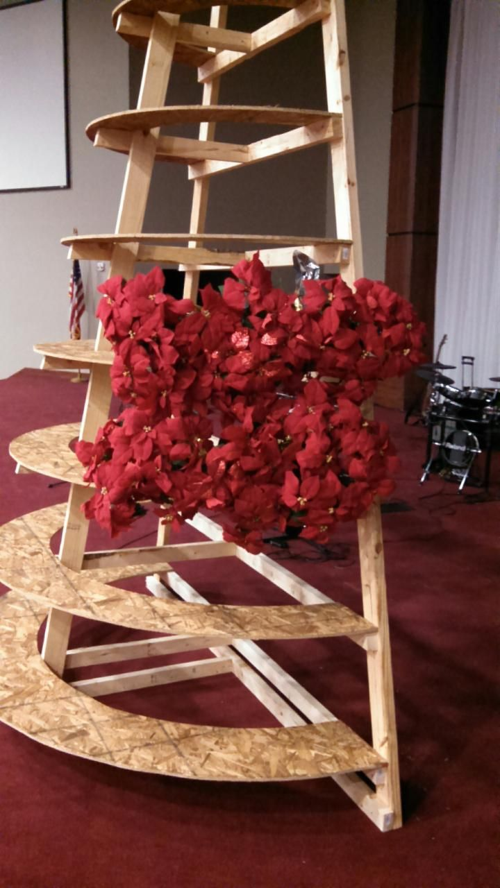 A Sideview Of Laying The Poinsettias And Fluffing The