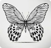 Butterfly Hand Drawing.Vector - Download From Over 54 Million High Quality Stock Photos, Images, Vectors. Sign up for FREE today. Image: 21721046