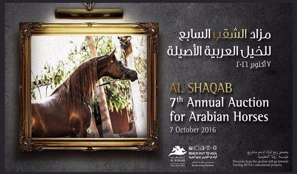 قائمة مزاد الشقب السابع للخيل العربية الأصيلة ٢٠١٦ Arabian Horse Horses Auction