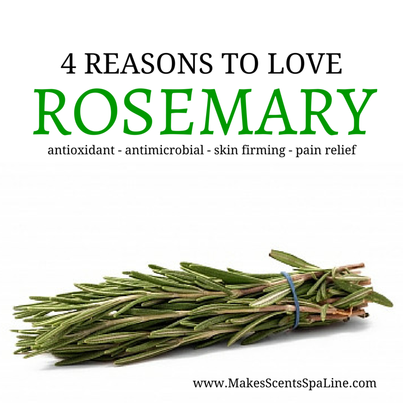 4 Reasons To Love Rosemary Makes Scents Natural Spa Line Rosemary Herb Rosemary Herbs