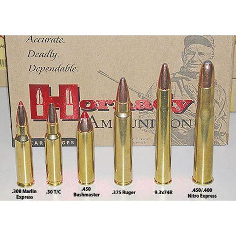 375 ruger | 375 | Sks rifle, 375 h&h magnum, Nitro express