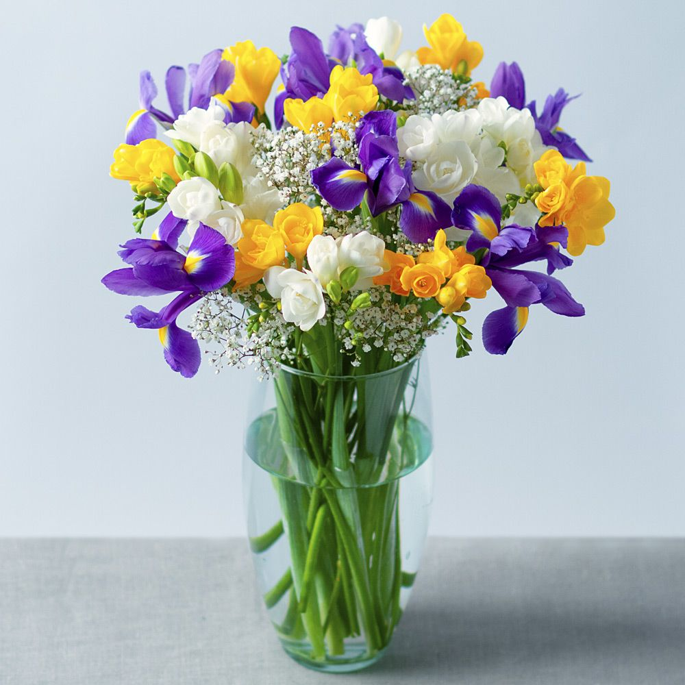 Iris and Freesias Bunches Iris, Cheap flower delivery