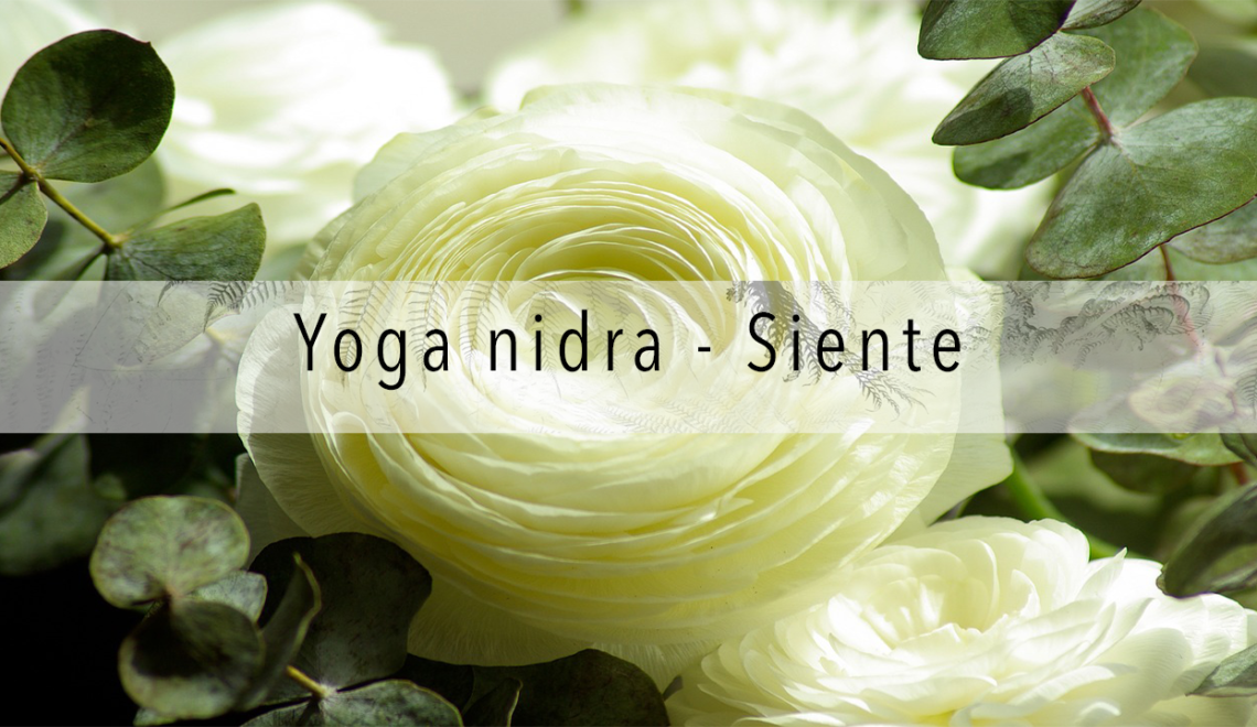 Meditación de Yoga Nidra - Siente   Yoga nidra, Yoga ...