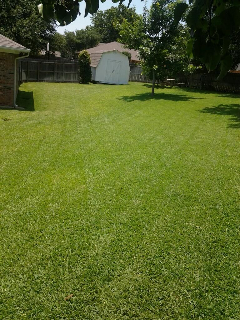 What Just Mowing Does Texas Lawn Service Details Lawn