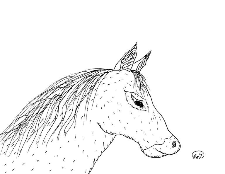 Robin 039s Great Coloring Pages American Quarter Horse And American Pertaining To American Paint Horse Coloring Pages Horse Coloring Horse Painting
