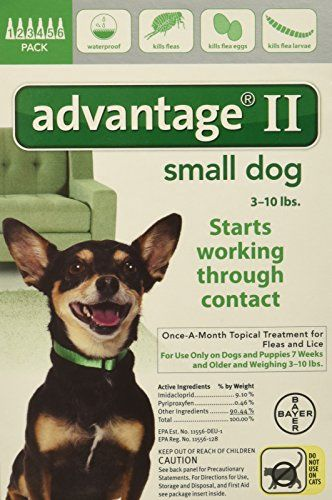 Advantage Ii For Dogs 10 Lbs And Under 6 Pack The New And Improved Advantage Ii Now Offers Flea And Lice Protection Fo Dog Flea Treatment Small Dogs Fleas
