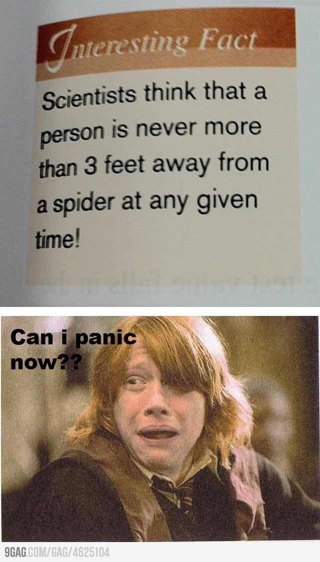 Can I Panic Now Harry Potter Memes Harry Potter Memes Hilarious Harry Potter Fan