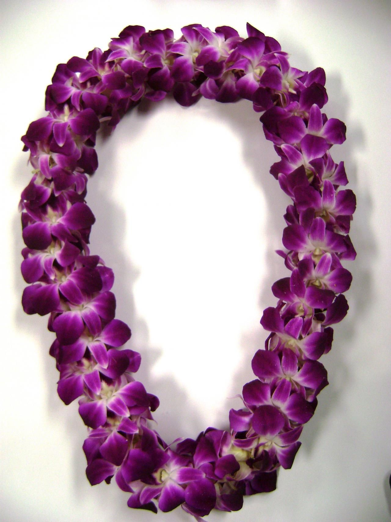 5 Bombay dendrobium orchid double lei Beautiful Leis Pinterest