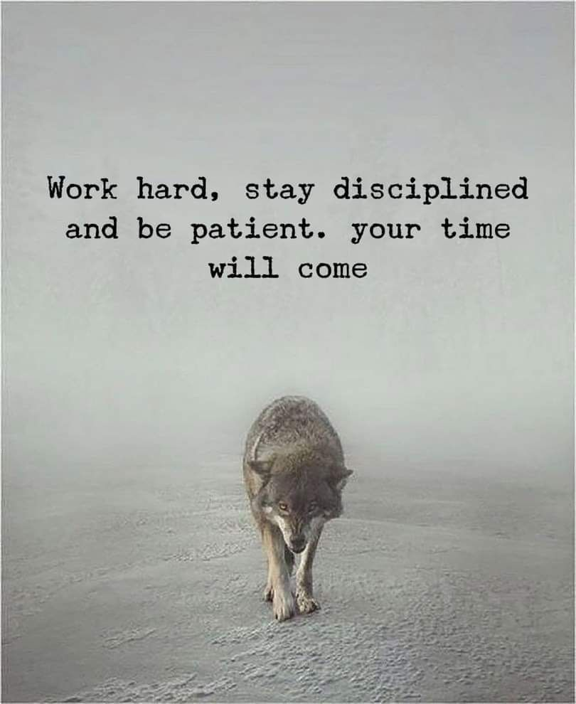 Work Hard Stay Disciplined And Be Patient Your Time Will Come Fridaythoughts Frid Short Inspirational Quotes Work Quotes Inspirational Quotes Motivation